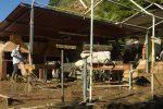 Casteldaccia, nel luogo della tragedia: baracche abusive e ville vicino al fiume