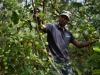 Agricoltura, ok Ue a nuove regole sui fertilizzanti