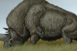 Rappresentazione dell'unicorno siberiano. Fonte: DiBgd, English Wikipedia