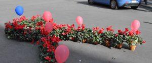 I fiori rossi in memoria delle donne vittime di violenza