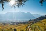 Foradori, verso zonazione Alto Adige, entro febbraio disciplinare