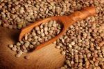 Agricoltura: in Italia soia e legumi bio da primato Ue