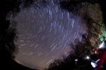 Le Leonidi, stelle cadenti d'autunno (fonte: Zoltán Bánfalvy)