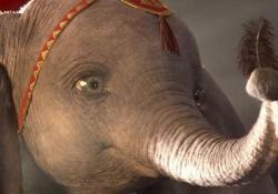 È uscito il trailer di Dumbo. Il nuovo film Disney dedicato all'elefantino con le orecchie troppo grandi. Danny DeVito vestirà i panni del proprietario del circo Max Medici. Colin Farrell quello della ex star del circo Holt Farrier. Dumbo esordì nelle sale il 23 ottobre del 1941. Il regista è Tim Burton, che per Disney aveva già diretto Alice in Wonderland. Il film arriverà nelle sale a marzo 2018