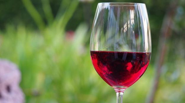 istituto vino e olio, Sicilia, Economia