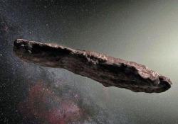 L'ipotesi di due ricercatori dell'università americana secondo cui l'oggetto non è nè un asteroide nè una cometa