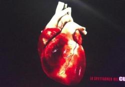Lo spettacolo del cuore