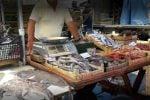 Controlli al mercato ittico di Trapani: sequestrati 85 chili di pesce, 20 mila euro di multe