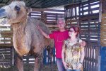 A Castelvetrano una fattoria per il figlio morto: ora diventa presepe vivente