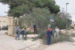 Volontari ripuliscono le aiuole di due scuole a Marsala