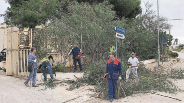 volontari scuole Marsala, Trapani, Cronaca