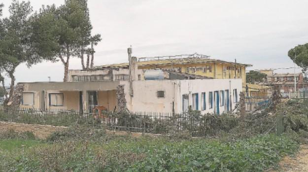 alberi scuola don bosco tagliati, Pina Schembari, Ragusa, Cronaca