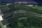 Il paesaggio vitivinicolo delle Langhe (fonte: Federico Moznich/Wikipedia)