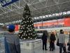 Natale: alberi finti inquinano 10 volte quelli veri