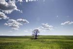 Nasce Soil4Life, progetto Ue per la salvaguardia del suolo