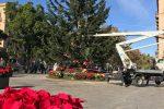 Palermo in festa, le immagini dell'albero di Natale allestito a piazza Politeama