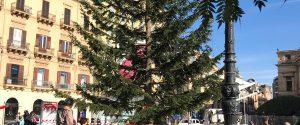Albero di Natale, presepe e stand: aria di festa in piazza Politeama a Palermo, le foto