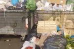 Tour tra i rifiuti a Palermo: immondizia da via Cristoforo Colombo a via Ammiraglio Rizzo