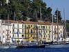 Xylella: non colpiti olivi Toscana ma macchia mediterranea