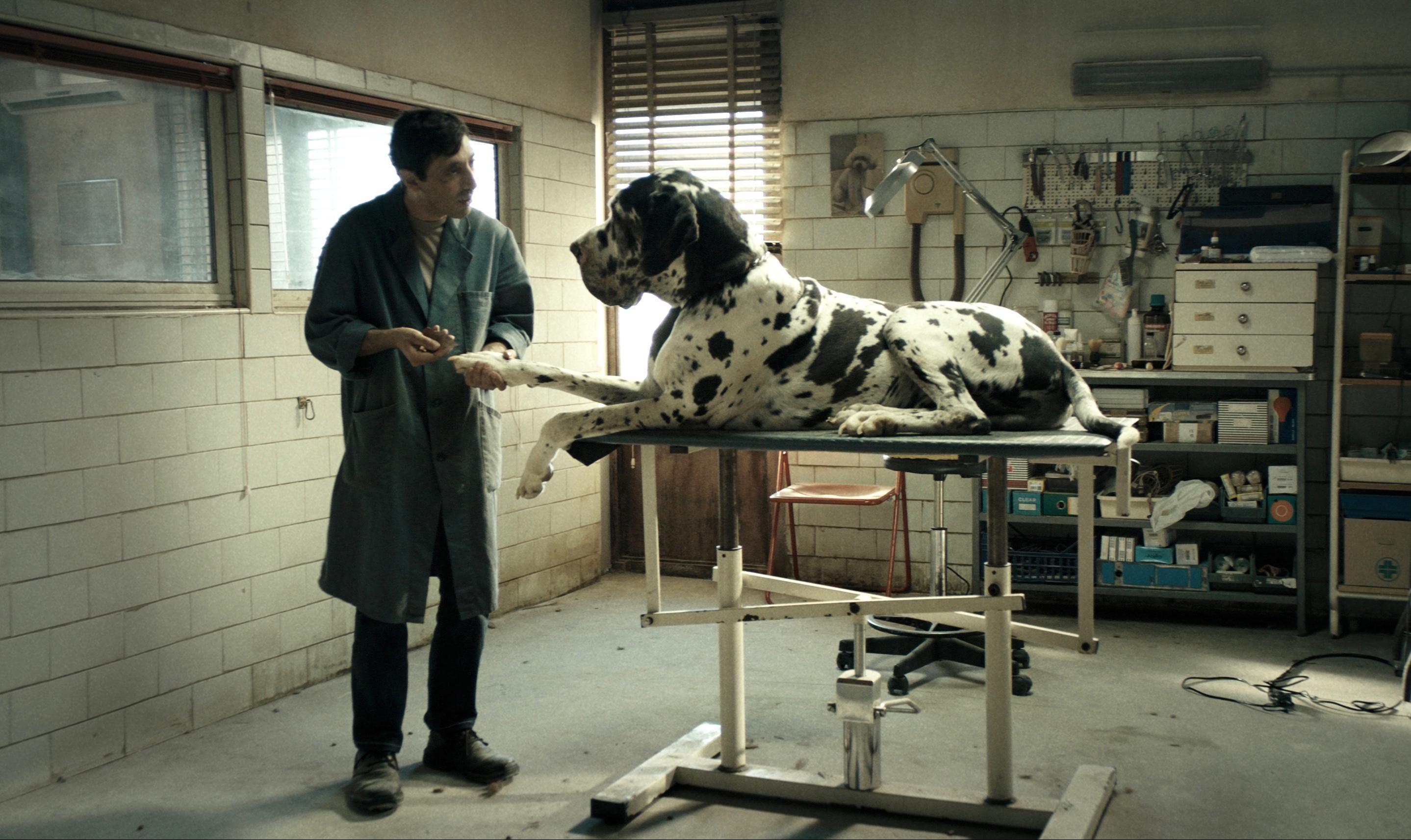 Oscar, Italia fuori come miglior film straniero
