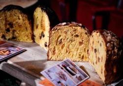 Gli «Artisti del Panettone» all'aperitivo di Natale di Cook, il nuovo inserto del Corriere della Sera
