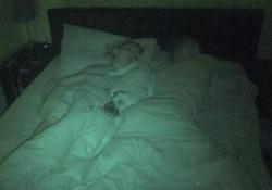 Nel 10% dei casi porta disturbi del sonno al padrone