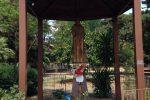 Danneggia la statua di Padre Pio a Franconfonte, denunciato