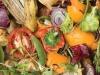 Piattaforma internet per recupero scarti agroalimentare