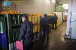 Prodotti agrumicoli privi di tracciabilità, sequestrate 12 tonnellate di arance a Catania