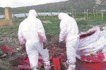 Rimozione dell'amianto, l'intera provincia di Siracusa è stata esclusa dal finanziamento