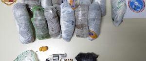 Nasconde armi e droga a Piazza Armerina, ma viene tradito dal pappagallo: arrestato