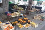 Due venditori ambulanti denunciati a Catania