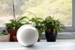 Il robot minimalista funziona come una macchina da saluti (fonte: Media Innovation Lab)