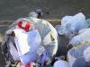 Rifiuti a Palermo, qualcuno si improvvisa spazzino: il video girato tra Sant'Erasmo e Settecannoli
