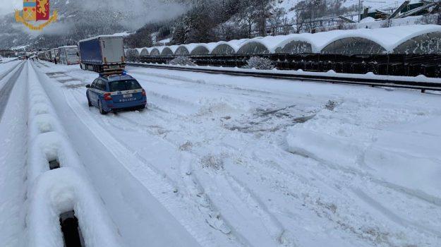 caos neve biancofiore, caos neve toninelli, Danilo Toninelli, Michaela Biancofiore, Sicilia, Archivio
