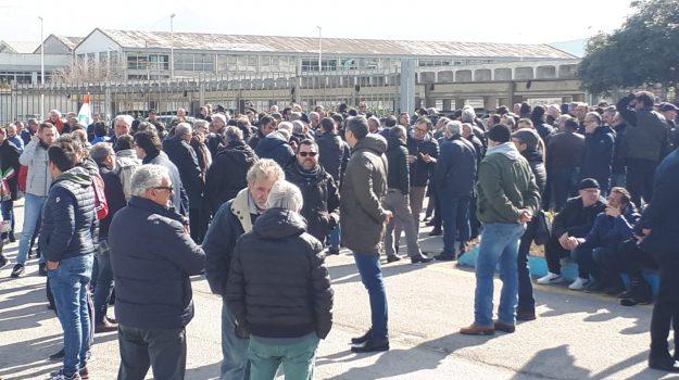 blutec protesta, Palermo, Economia