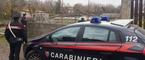 Aci Sant'Antonio, sequestrata un'azienda zootecnica abusiva: denunciato il titolare