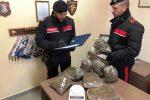 Sorpreso con una valigia piena di marijuana, arrestato a Palermo