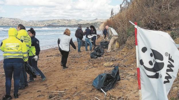 pulizia spiagge licata, wwf licata spiagge pulite, Agrigento, Cronaca