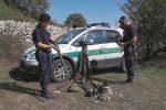 Meno cacciatori a Ragusa, ma sono aumentate le infrazioni