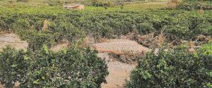 Fiume Verdura in sicurezza, progetto da cinque milioni nel Riberese