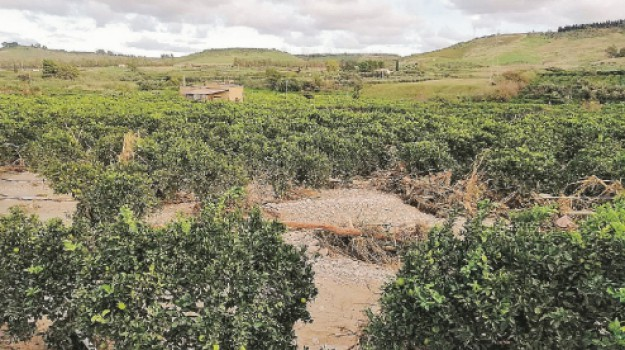 fiume verdura progetto, Agrigento, Economia