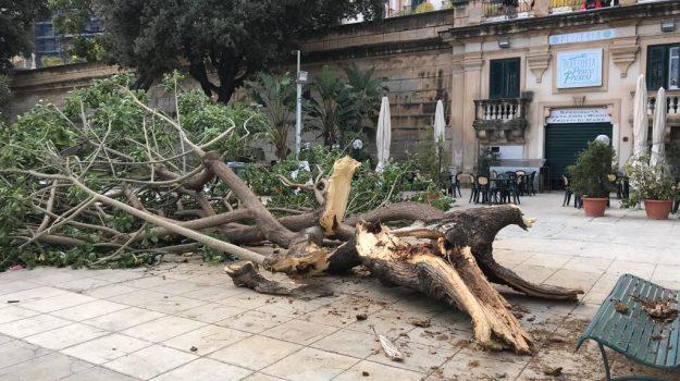 danni palermo, maltempo palermo, maltempo sicilia, maltempo vento, neve palermo, Palermo, Cronaca