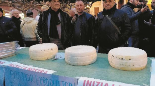 protesta latte vittoria, Ragusa, Economia