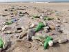 Rimini dichiara guerra a plastica, stop in spiaggia e mense