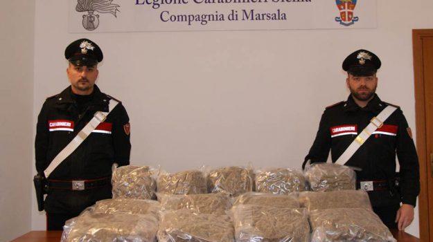 droga, marsala, sequestro, Trapani, Cronaca