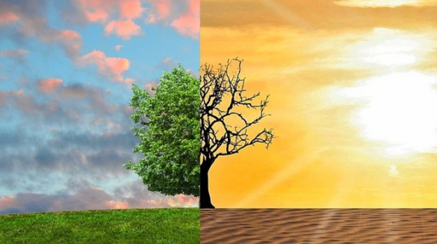 Terra e Gusto
