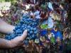 Vino: doc terre Alfieri compie 10 anni, festa nellAstigiano