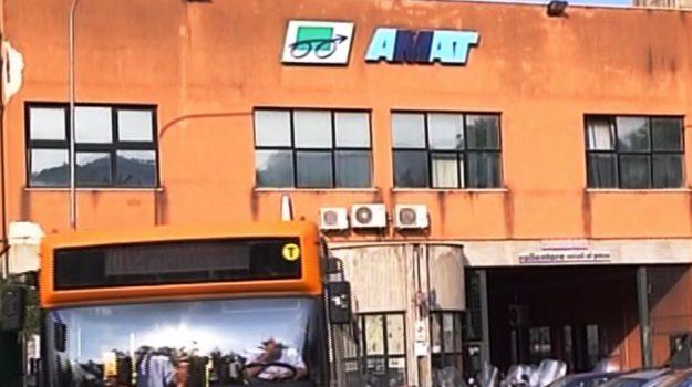 AMAT, Palermo, Economia