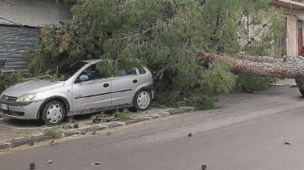 alberi caduti, bufera, Maltempo, Agrigento, Cronaca